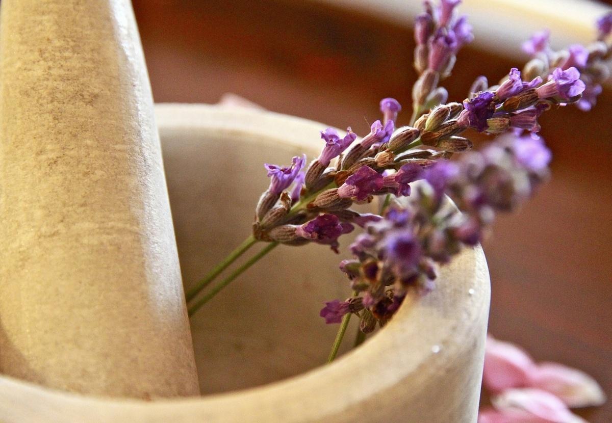 Natürliche Reiseapotheke unterwegs Vanlife Camper Kräuter Ingwer ätherische Öle Heilmittel Erkältung alternative Medizin
