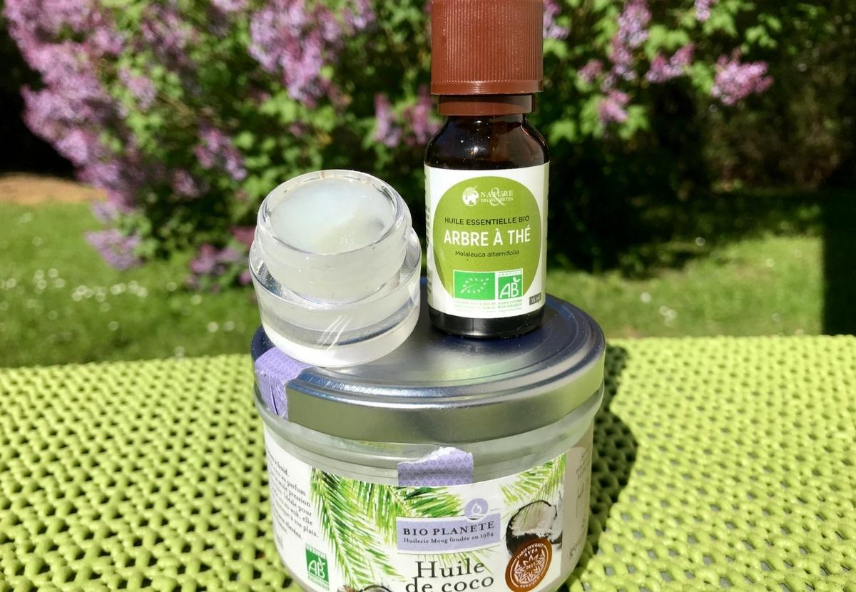 Teebaum Kokosöl Labello Alternative Lippenbalsam Lipbalm selbst gemacht gesund Insektenstiche Mückenschutz Deo Pickel Ausschlag Rötung reisen Reiseapotheke Patascha unterwegs Medizin natürliche Heilmittel