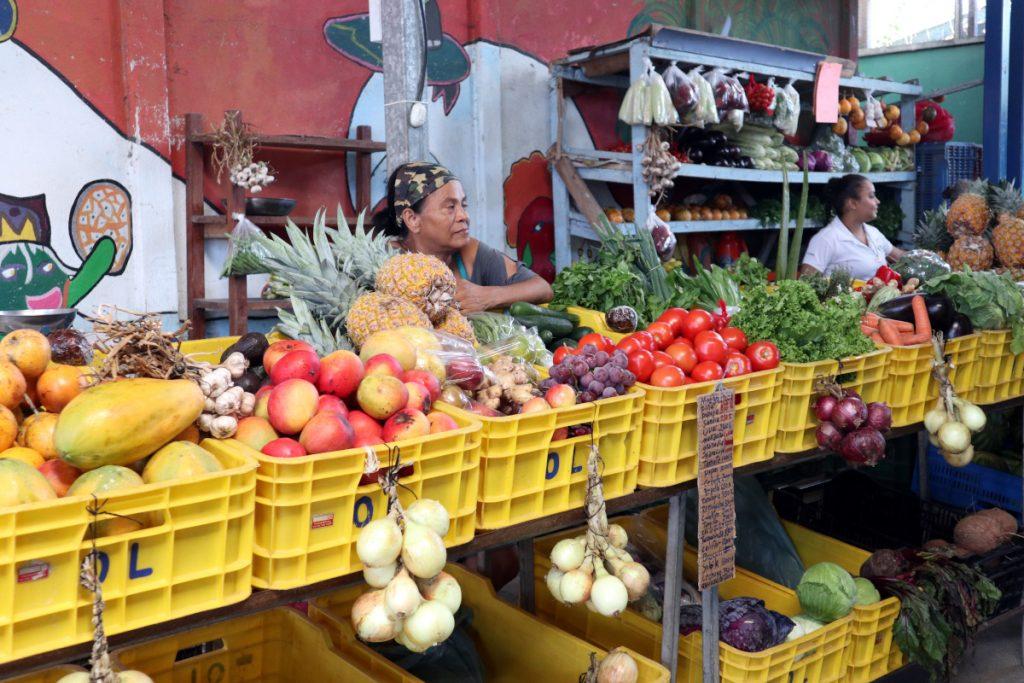 Patascha Reiseblog Roadtrip Costa Rica Rundreise Reiseroute Dachzelt Nomad America mieten Autovermietung offroad Camping wild campen Sehenswürdigkeiten Informationen Öffnungszeiten Nationalpark Puerto Viejo Limon Farmers Market Feria agricola Markt