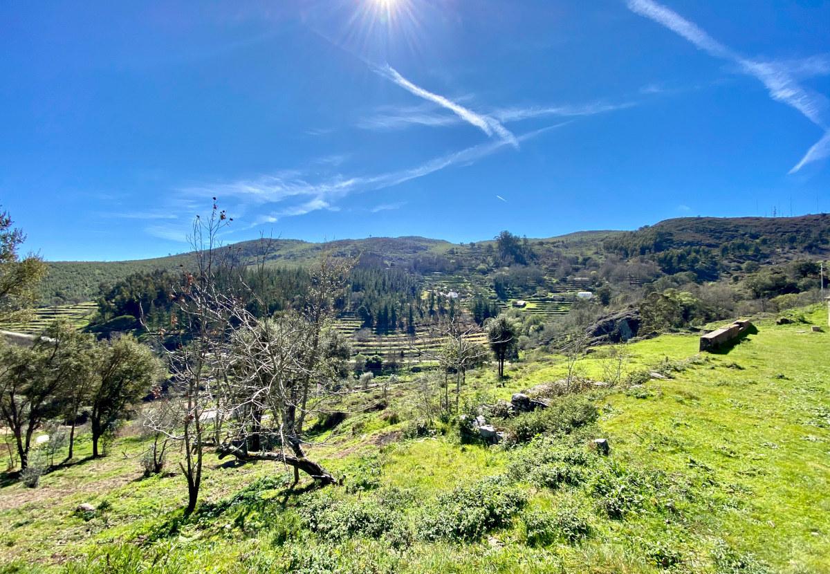 Vom Miradouro da Foia aus durch die Serra de Monchique. Wandertour in der Algarve durch das hüglige Hinterland (Karte und GPX Daten)